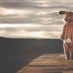 IMO angażuje się w przeciwdziałanie nielegalnemu handlowi dzikimi zwierzętami