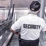 Wlk. Brytania: Weryfikacja systemu karania kierowców za przewóz imigrantów