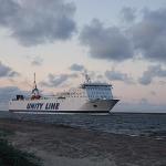 Obrót ładunków w sektorze przewozów promowych ro-ro w polskich portach
