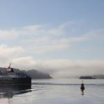 Rząd Szkocji żąda większych statków