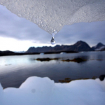 Parlament Europejski: Statki muszą zostać włączone w porozumienie klimatyczne