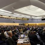 Interferry pochwala podejście IMO do konwencji o wodzie balastowej