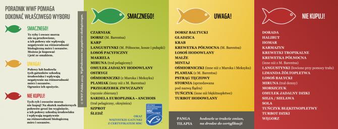[Na marginesie]: Sprawdź, czy kupujesz ryby zagrożone wyginięciem