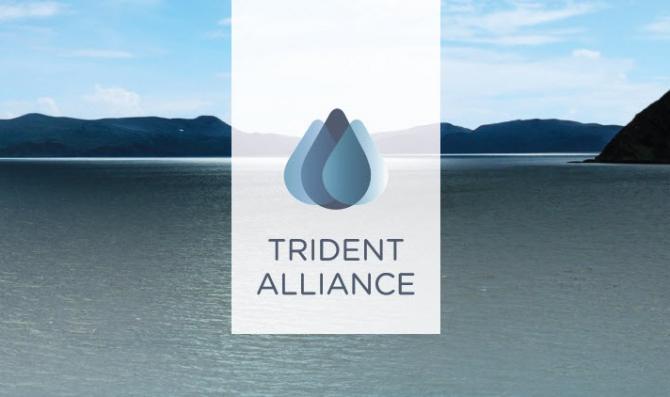 Sojusz Trident Alliance powołuje nową przewodniczącą